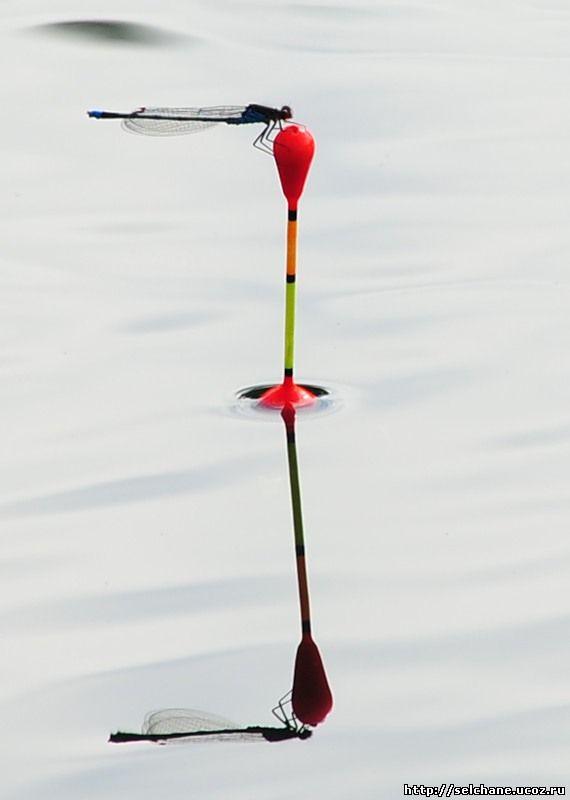 Требования к поплавку цвет