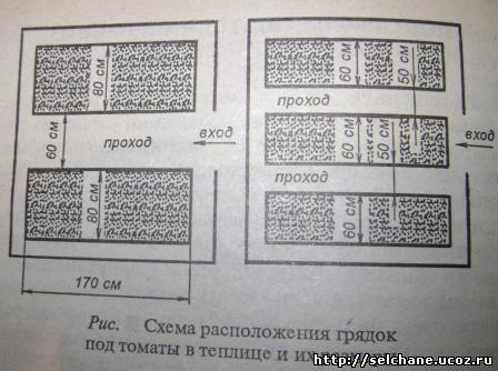 """,""selchane.ucoz.ru"
